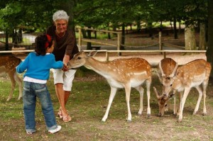 Wildpark-Klaushof-Bad-Kissingen